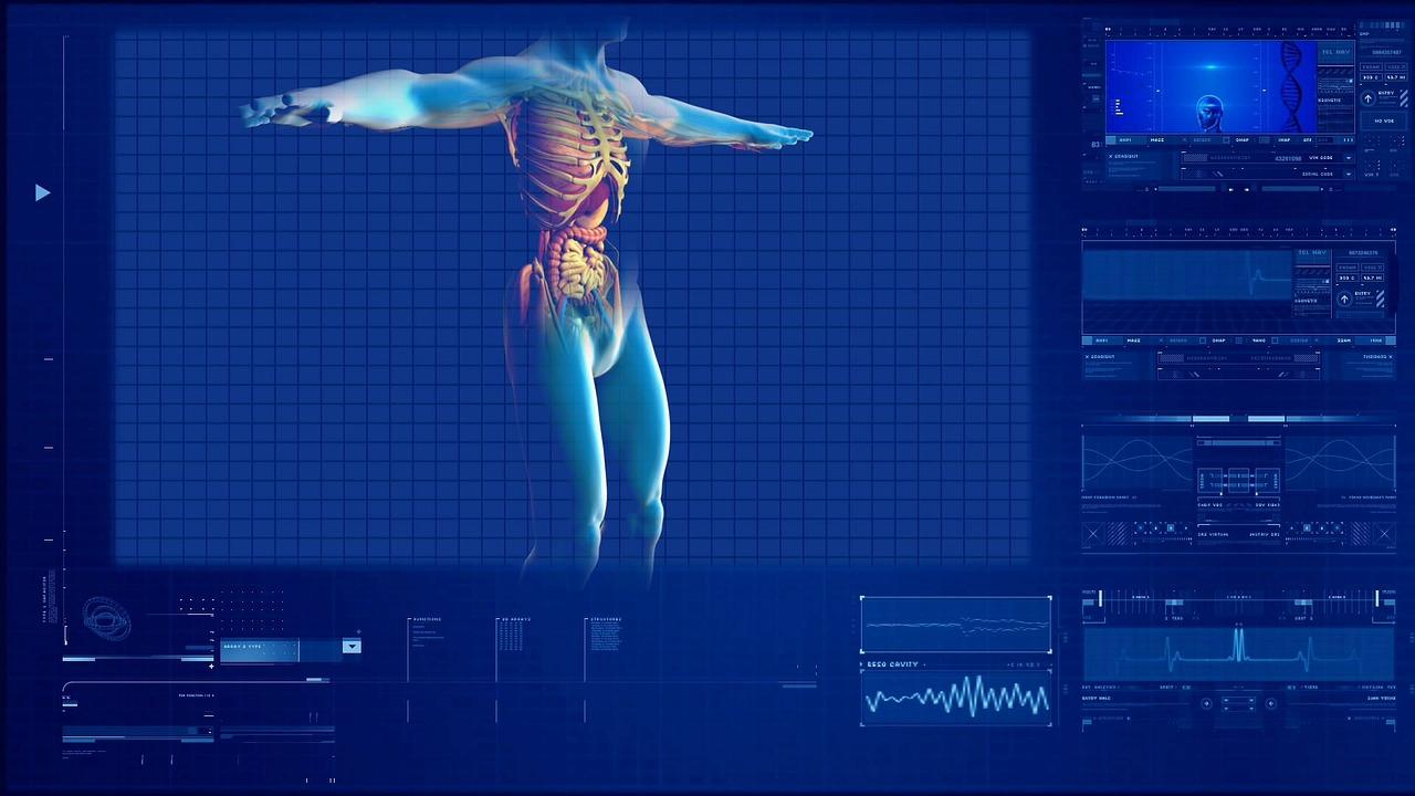 【ニュース速報】肝臓が再生する仕組みが解明された!!