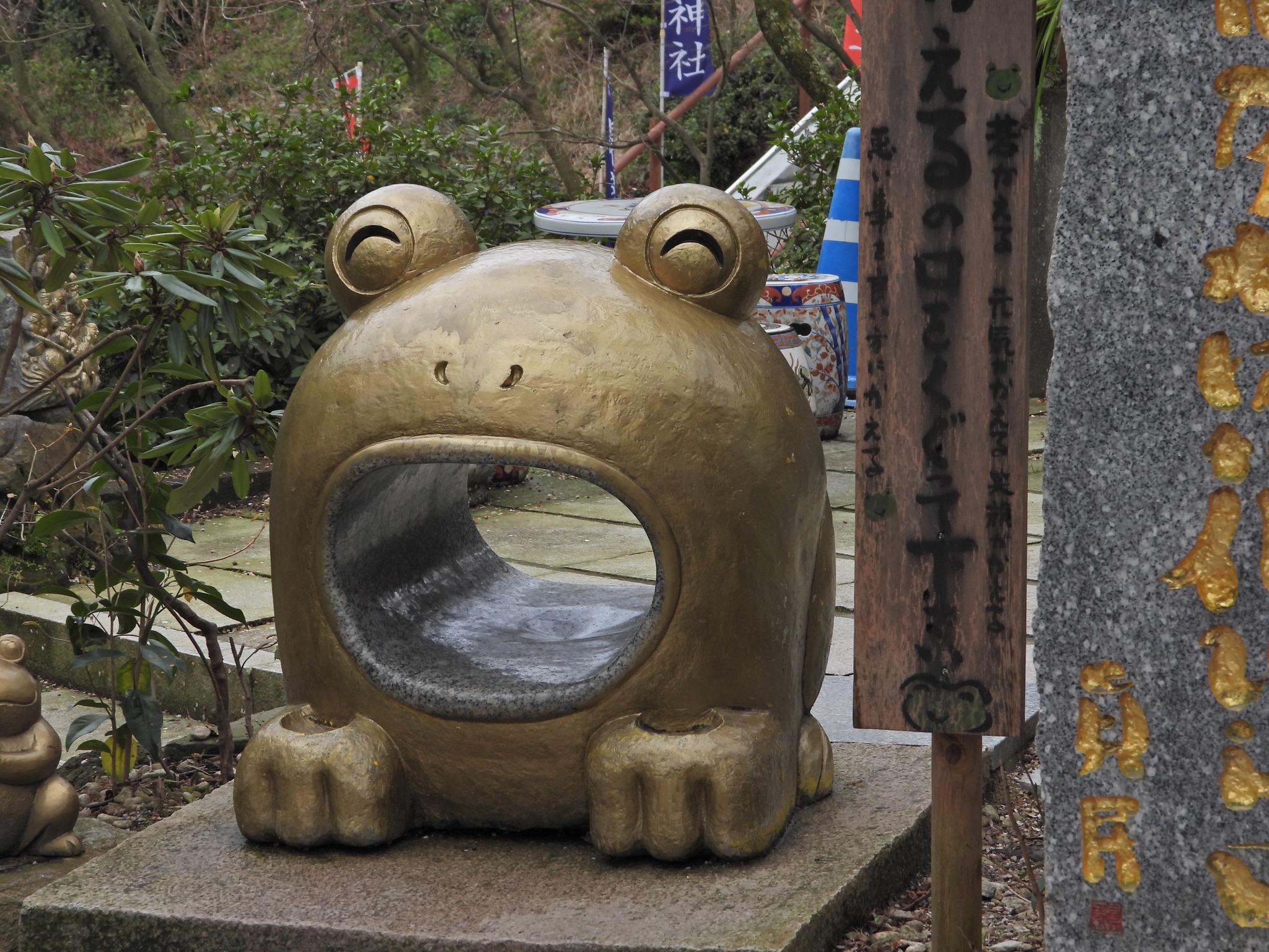 【いったい何匹いるの?!】かえる寺『如意輪寺』に行ってみた